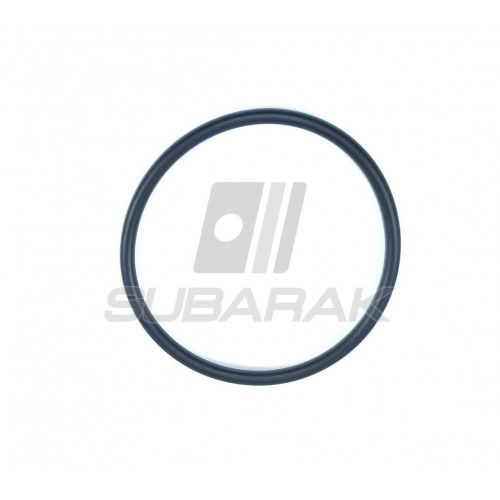Tarcze hamulcowe Zimmermann do Subaru Impreza/Forester